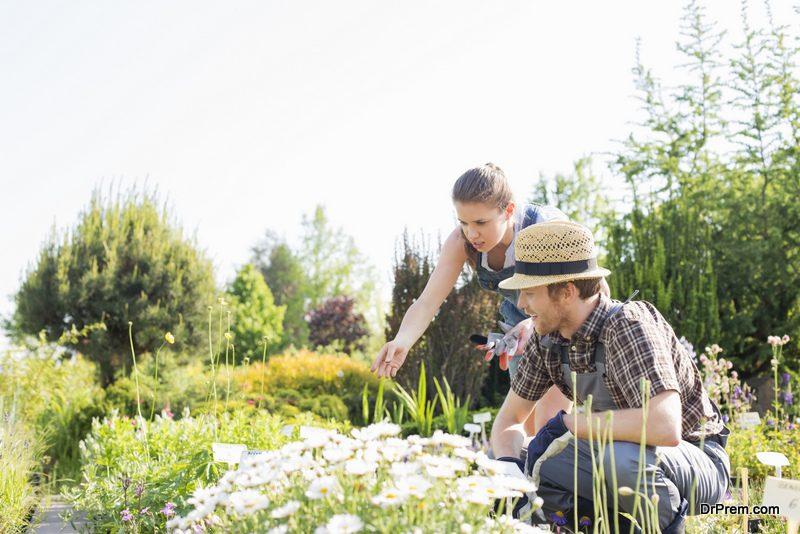 Transform-Your-Garden