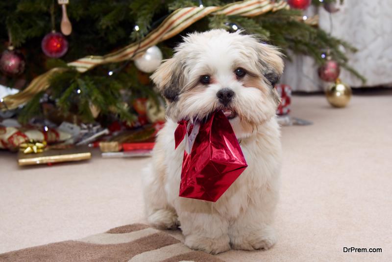 Christmas Decoration Mistakes