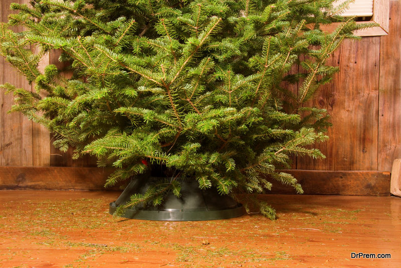 Your-Christmas-tree-dries-up