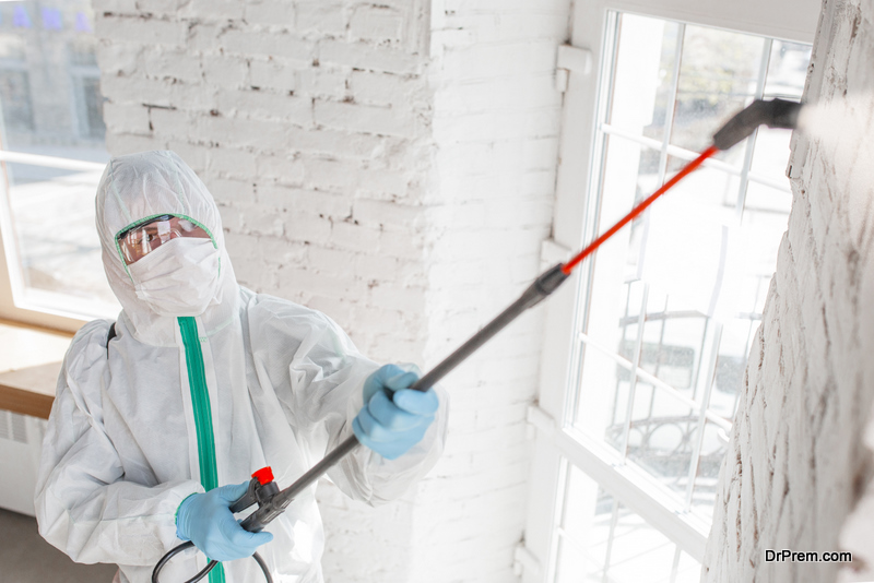 Equipment for mold removal